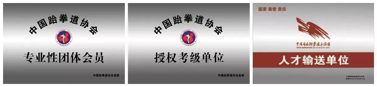 中华少年志·金武之志